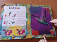 dve-ladoshki-ptici (2)